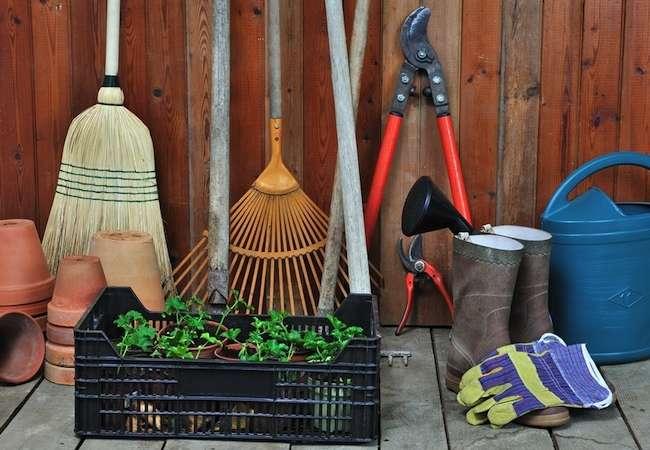 Best Tools for gardening